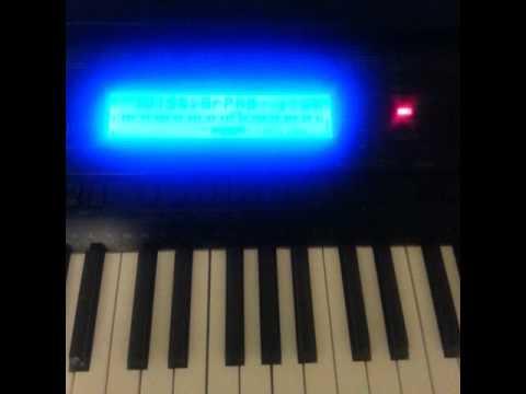 Nintendogs + Cats - Walking the Dog on the Casio WK-500 Piano Keyboard