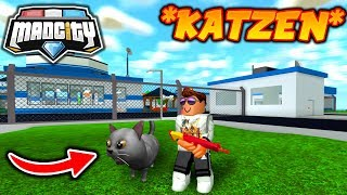 'NEW CATS' HAUSTIERE in MAD CITY ROBLOX