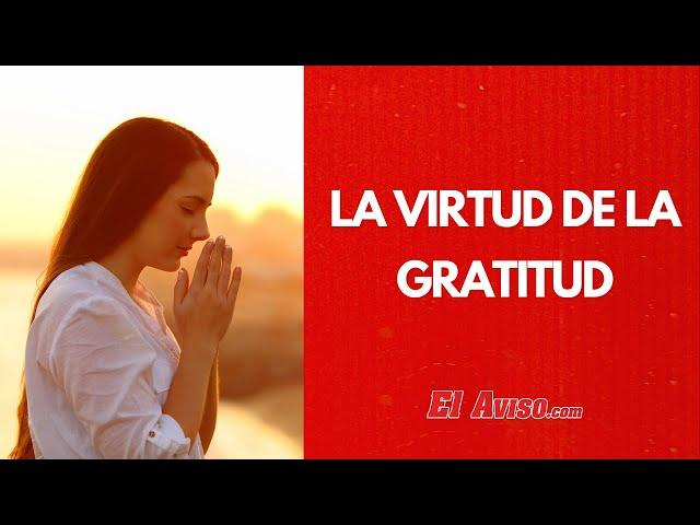 La virtud de la gratitud | EL AVISO MAGAZINE