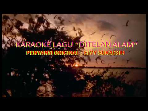 Karaoke Ditelan alam Elvy Sukaesih HQ Audio & Video