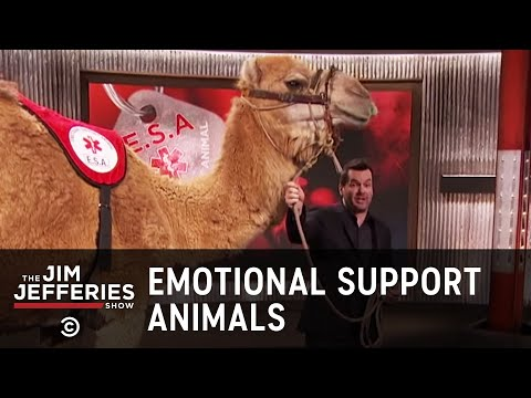 Leave Your Emotional Support Camel At Home - The Jim Jefferies Show