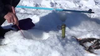 Зимняя рыбалка  Озеро Шамсутдин  28 03 15 г