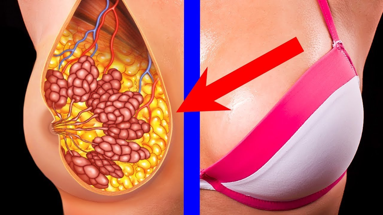 5 Easy Ways to Firm and Shape Your Breasts