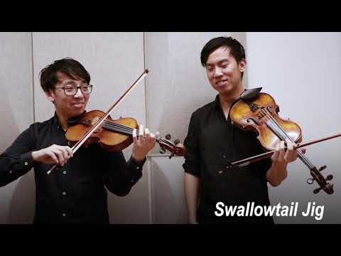 Classical vs Folk Violin