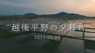 【新潟空撮】越後平野の夕暮れ【Phantom4Pro】