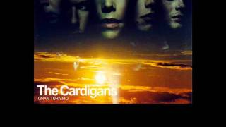 Lovefool - The Cardigans (Acoustic)