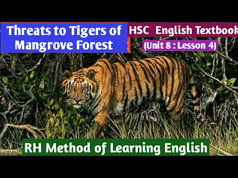HSC English 1st Paper Textbook : Threats to Tigers Of Mangrove Forest(Unit  8 : Lesson4)