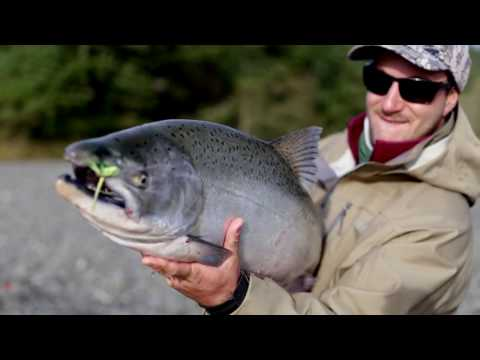 The Secret to Catching Salmon