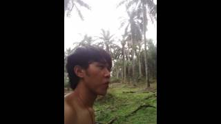 Download Video Jalan jalan d kebun sawit MP3 3GP MP4