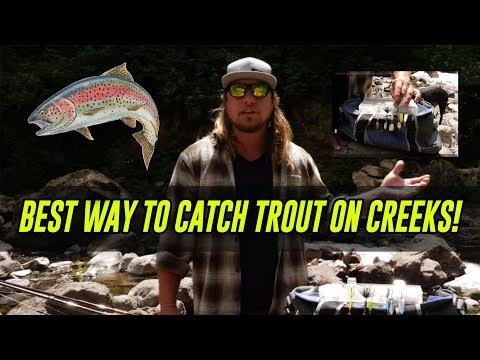 ALL TIME Best Way To Catch TROUT In Creeks, Rivers, & Streams! | In Depth HOW TO.