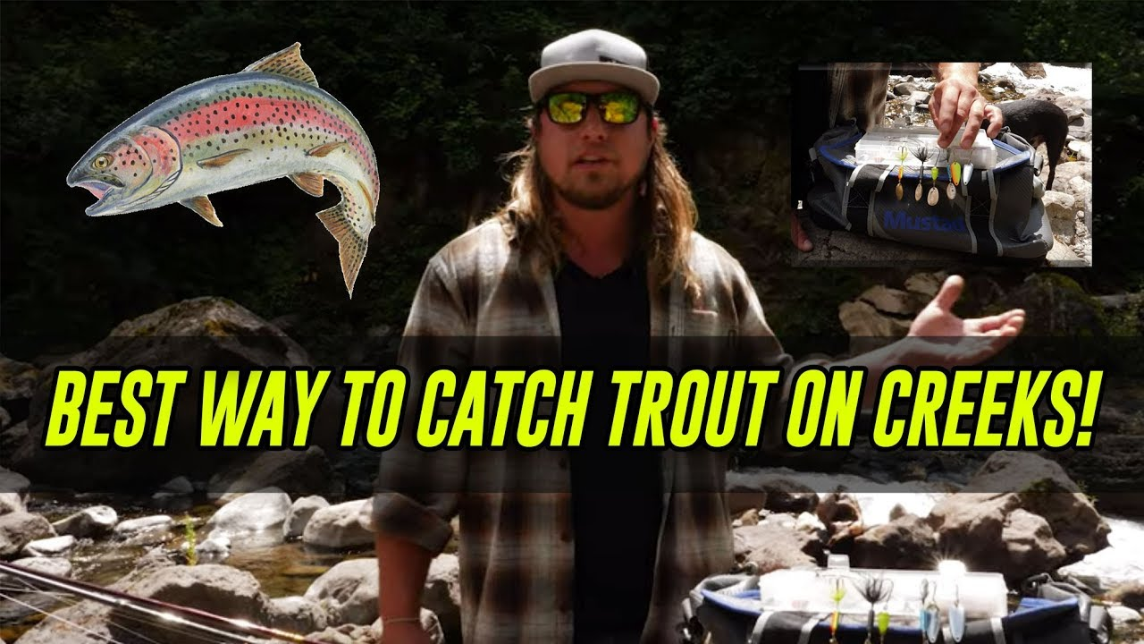 ALL TIME Best Way To Catch TROUT In Creeks, Rivers ...