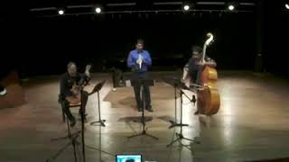 Música para Clarineta, Contrabaixo e Violão de Estércio M Cunha