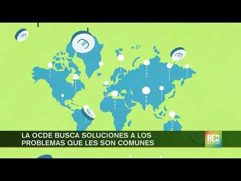 RED+ | La OCDE busca soluciones a los problemas que les son comunes