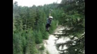 Ziptrek Ecotour Whistler B.C.