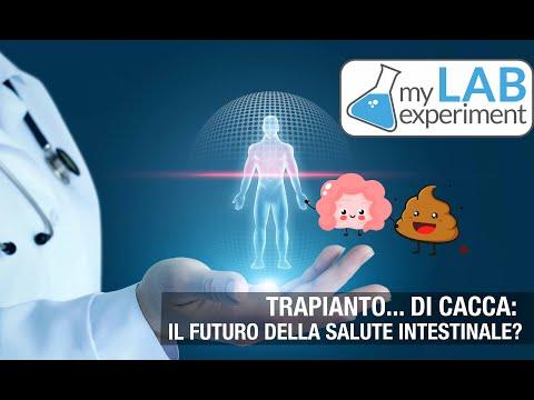 trapianto-di-cacca:-è-il-futuro-della-salute-intestinale?
