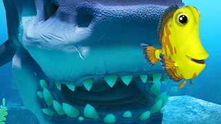 YELLOW DORI TRIES TO SURVIVE THE OCEAN - Feed...