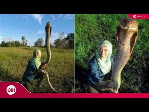 أكبر 10 أفاعي حقيقية عثر عليها حول العالم