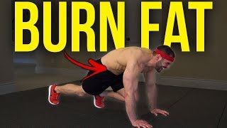 Burn Fat with this 6 Minute HIIT Workout at Home (Belly Fat, Love Handles, etc.)