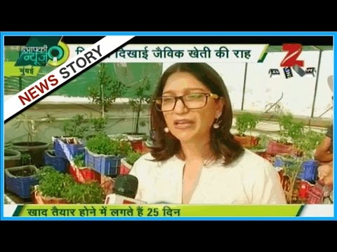 Roof-top Organic Farming : Priya in Mumbai grows vegetable with household organic fertilizers