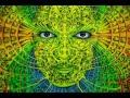 PSYMAFIA SET Psytrance Full On Mix