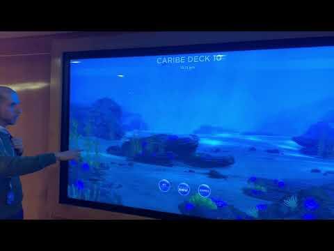 Carnival's PlayOcean interactive screens