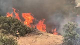 Firefighters Work to Contain Californias Whittier Fire