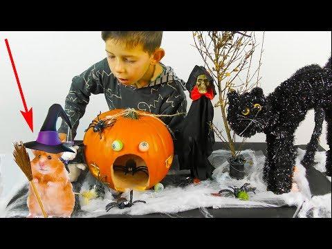 Готовимся к Хэллоуину/DIY дом ведьмы из тыквы/Хомяк в образе ведьмы/Hamster as a witch