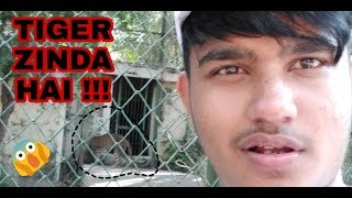 Exploring One Of The Best Zoo In India | Ahmed Raza Lifestyle