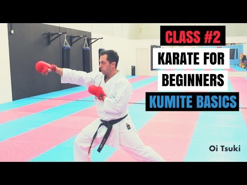 Martial Arts for Beginners – Lesson 2  Karate Fighting Basics