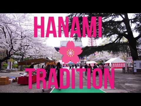 HANAMI in Minato City, Tokyo