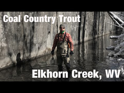 WB - Coal Country Trout, Elkhorn Creek, WV - February '18