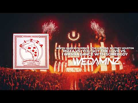 Martin Garrix  Pizza vs You Got The Love vs I Wanna Dance With Somebody WeDamnz Mashup