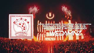 Martin Garrix - Pizza vs. You Got The Love vs. I Wanna Dance With Somebody (WeDamnz Mashup)
