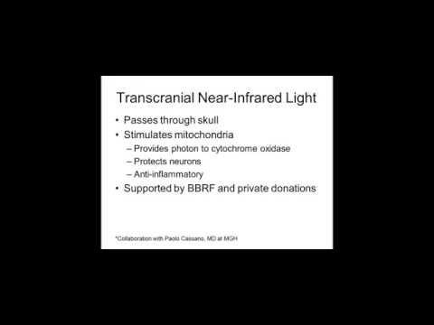 Is Bipolar Disorder an Energy Disorder? Evidence and Novel Treatments