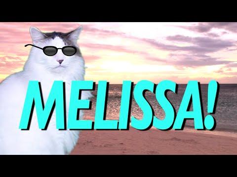 HAPPY BIRTHDAY MELISSA! - EPIC CAT Happy Birthday Song