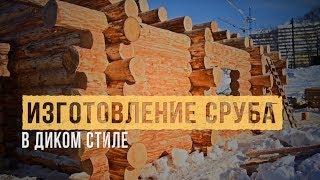 видео Строительство домов и бань из сруба