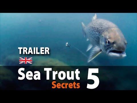 UK vers. Sea Trout Secrets 5 Spin fishing