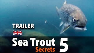 UK vers. Sea Trout Secrets 5 Spin fishing