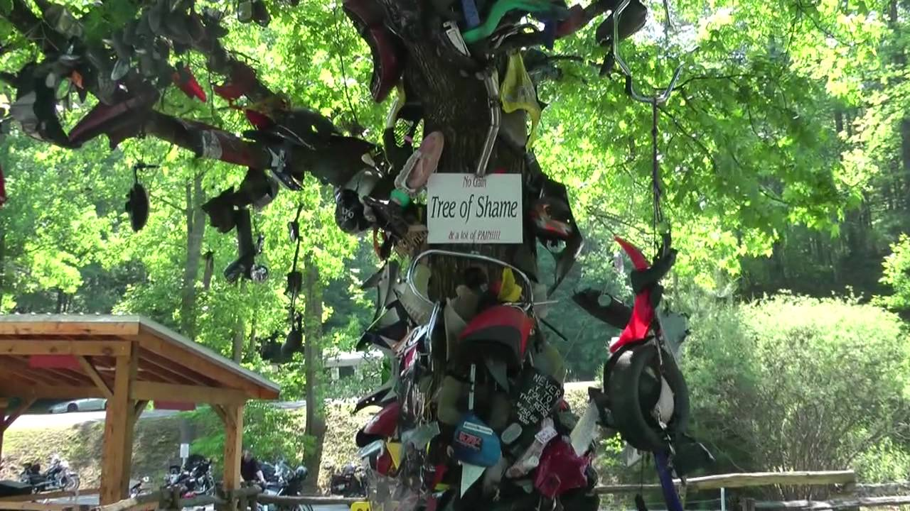 22 Tree Of Shame Deals Gap Smokey Mountains Tennessee Youtube