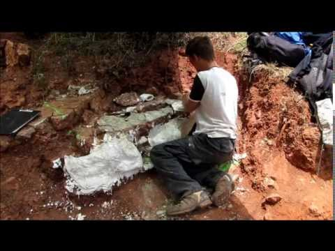 Excavation of giant fossi amphibian in Portugal- Paleontology dig
