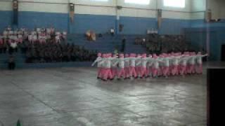 Kawad Kaki Daerah (NGO) Pasukan Puteri Islam Sek Tinggi Kluang