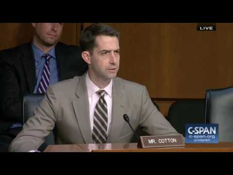 Tom Cotton Asks if Hillary Clinton is Undermining Integrity of U.S. Elections