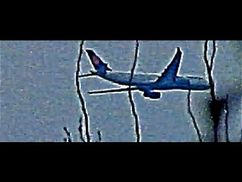 Misaligned Wings And Lumpy Exterior Doesnt Stop This Fake [Plane] From Flying Straight!