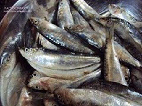 Limpiar y quitar espinas a sardinas
