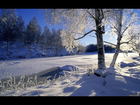 Interesting winter pictures part 13