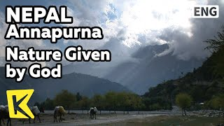 【K】Nepal Travel-Annapurna[네팔 여행-안나푸르나]신이 빚은 자연/Nature Given by God/Himalaya/Mountain