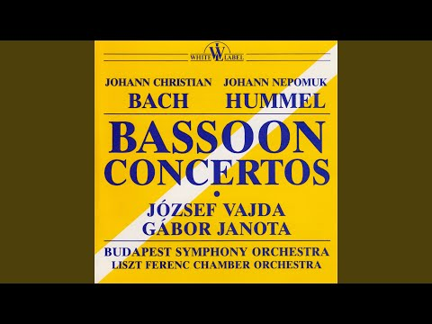 Concerto In E Flat Major For Bassoon And Orchestra: II. Largo Ma Non Tanto
