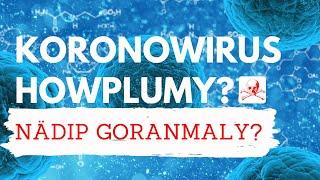 KORONOWIRUS HOWPLUMY??? / TURKMENCE