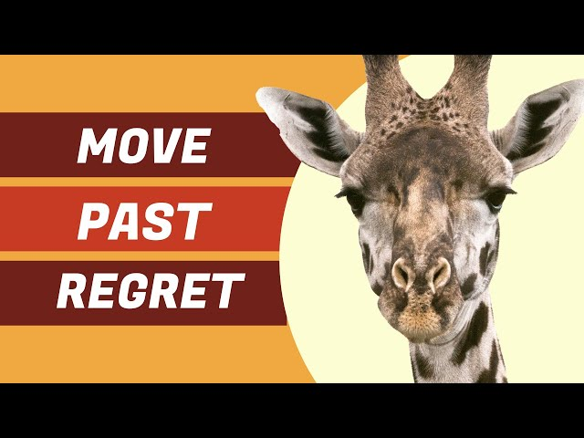 Regret - How can we move past it?