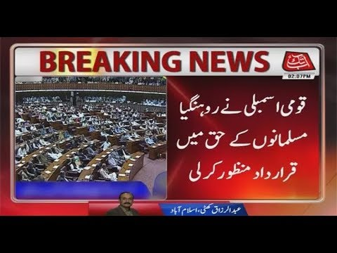 NA Passes Resolution Against Ethnic Cleansing of Rohingyas